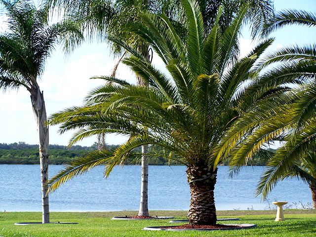 Avon Park (FL) United States  city images : 2881 US Hwy 27 North, Avon Park, FL 33825 United States