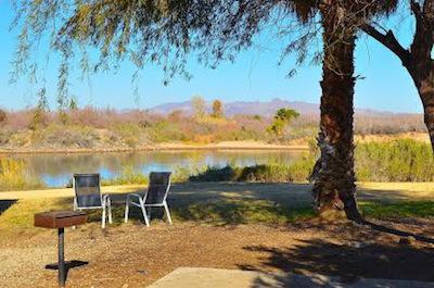 Arizona Oasis Rv Resort Passport America Camping Rv Club