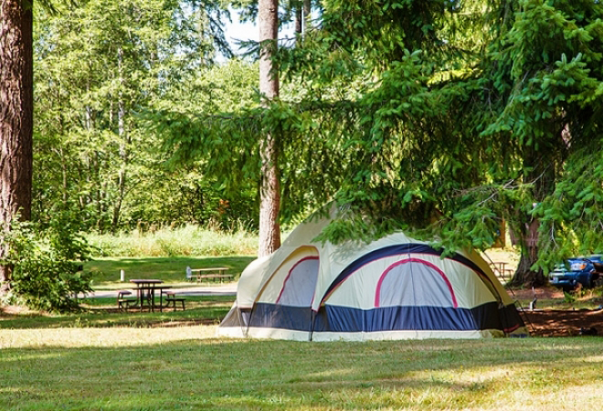 Paradise Rv An Encore Resort Passport America Camping
