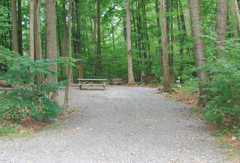 camping in the woods. Unique The Warwick Woods Family Camping Resort Throughout In The A
