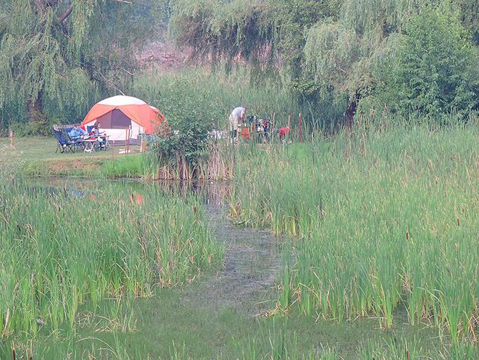 Camp Coeur D'Alene - Passport America Camping & RV Club