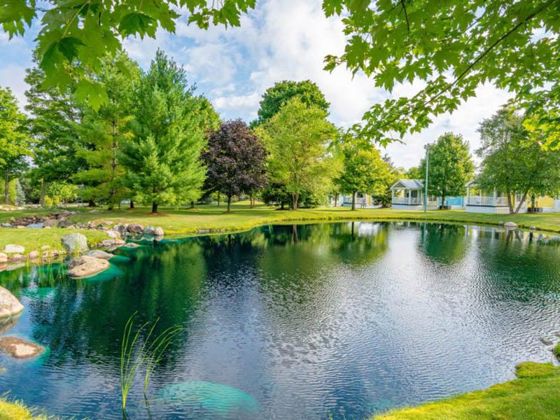Petoskey Rv Resort A Sun Rv Resort Passport America