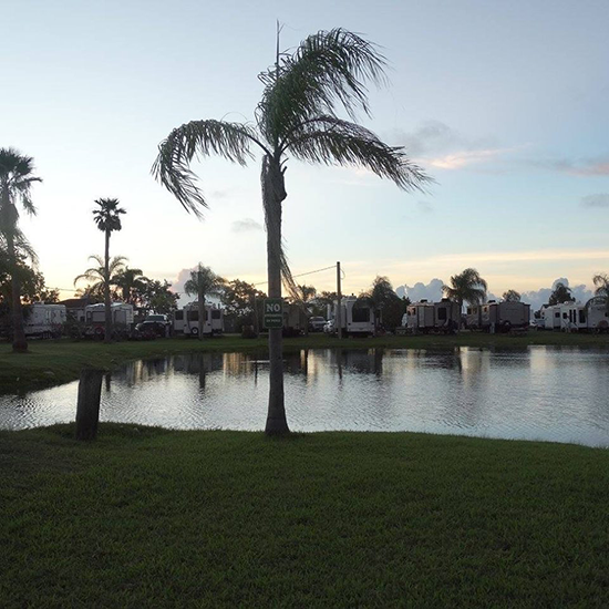 Tropical Gardens Rv Park Amp Resort Passport America